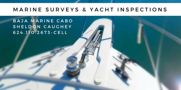 Marine Surveys